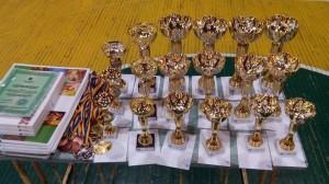 Відкриті всеукраїнські змагання Кубок Рубана 2015